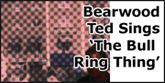 Bearwood Ted Sings The Bull Ring Thing