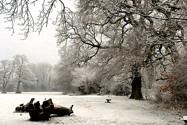 Sarehole Mill snow by Karen Strunks